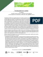 Combustion_de_carbon.pdf