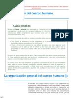 APB1.pdf