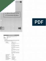 Modelo Liquidacion Financiera