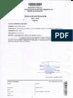 Rosa Paucar Meza- Fiscalía Ambiental archivainvestigación preparatoria