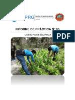 Informe 5 de Agro