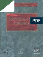 libro-metodologia- en word.docx