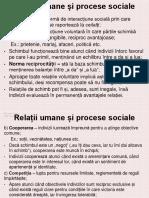 Procese Sociale. Grupuri Sociale