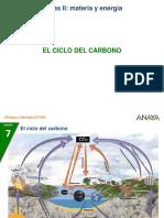 4-1-Ciclo_carbono