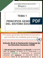 TEMA 1 Principios Generales Del Sistema Educativo