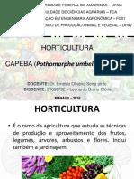 CAPEBA/PARIPAROBA