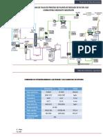 Planta de Rechazo de n2 Del Gas Combustible Mediante Absorción