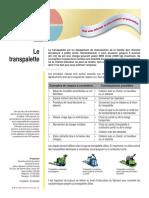 multiprevention-fiche-transpalette.pdf