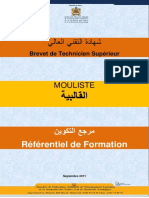 MOULISTE.pdf