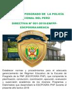 directiva N° 01-2018 escpogra