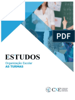 Estudo Organizacao Escolar-As Turmas Versao Final