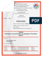 Isolement Et Caractérisation du pathogène Clostridium Difficile