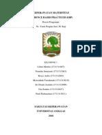 makalah maternitas EBP