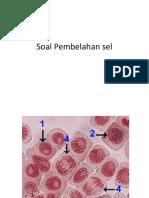 Soal Pembelahan sel.pptx