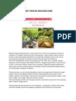 LUAR BIASA..!082-220-228-118, harga bibit durian bawor di jakarta, harga bibit durian bawor murah depok