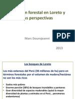 situacinforestalenloretoysusperspectivas-140115115004-phpapp02