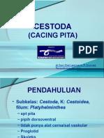 Pseudo Phyl l Idea