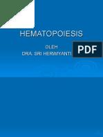 dr.herwiyati HEMATOPOIESIS