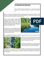 Documento_(11).docx