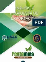 Informe Pentamins MK Internacional