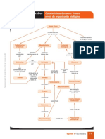 Mapas de conceitos.pdf