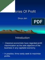 20281064 Theories of Profit