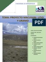 RESUMEN LITIO.docx