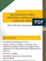 Movimiento fetal