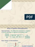 capillaryelectrophoresisfinal ppt 1.pptx