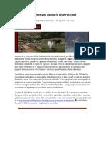 Factores Que Dañan La Biodiversidad