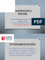Constitución y DD