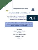PRE-PROFESIONAL AGLI QUISPE.docx