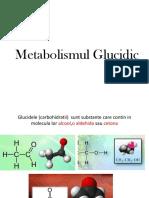 Metabolismul-Glucidic.pptx