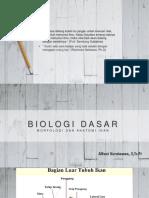 biodas morfologi ikan