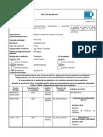 Plan Auditoria Externa