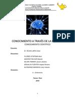 monografia 1.docx