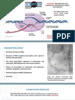 formulación Inorganica
