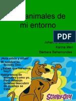Los animales de mi entorno