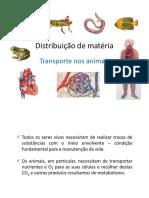 Pp3 -Transporte Nos Animais_1