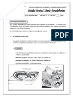 FICHA GEOG 4° - 5° SEC Actividades Extractivas I
