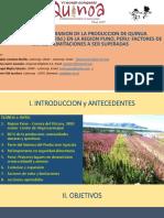 Expansion y  Produccion de la  Quinua en  el Peru