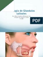 Apunte Urología
