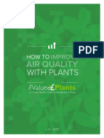 How to Improve Air Quality With Plants the Value of Plants 1