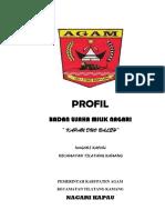 Profil Badan Usaha Milik Nagari (BUMNag) Kapau, yaitu KAPAU DUO BALEH