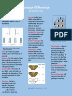 genotypes vs phenotpes by kristina de dieu