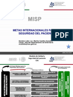 Metas Internacional Es Seguridad Paciente