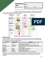 CSS aminoacizi.pdf