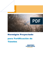 Shotcrete Book Spanish 2013