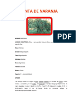 Informe de Horticultura