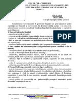 Model_caracterizare.pdf